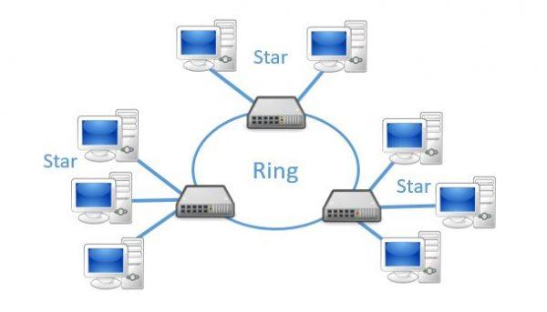 macam macam topologi jaringan komputer